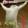 艾清赵老师20162214